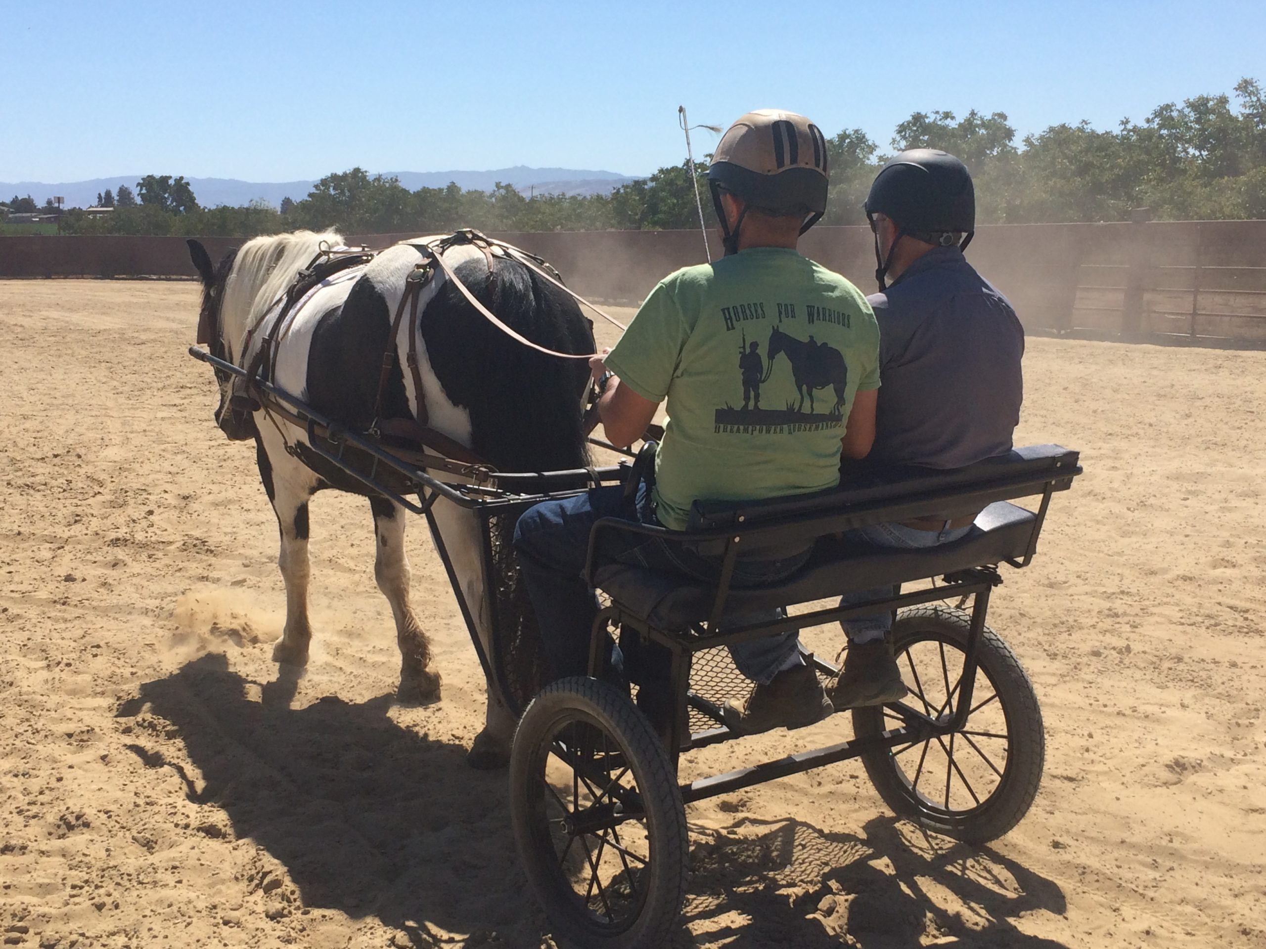 Photo of 2 men partaking in Therapeutic Driving - driving a horse drawn carriage